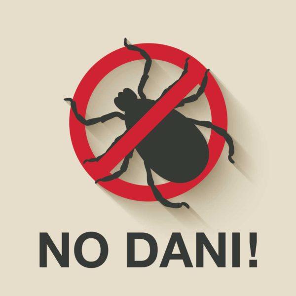 秋はダニアレルギーに注意!