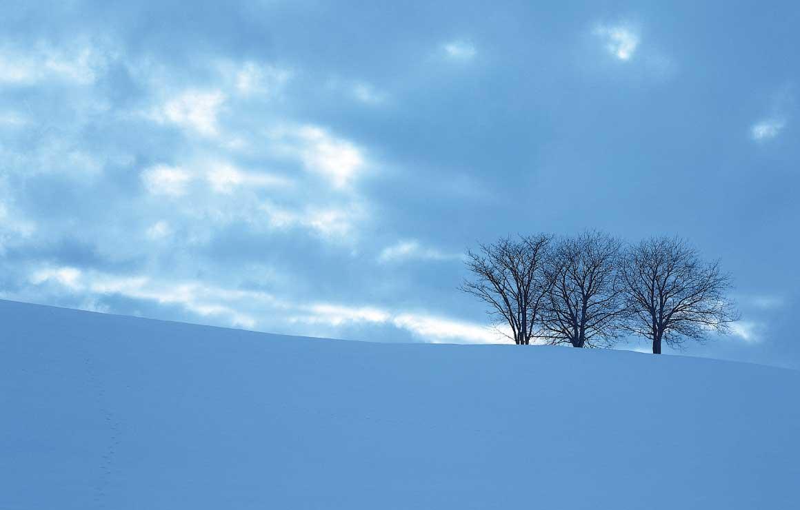 スモリの全館空調なら寒い冬でも快適